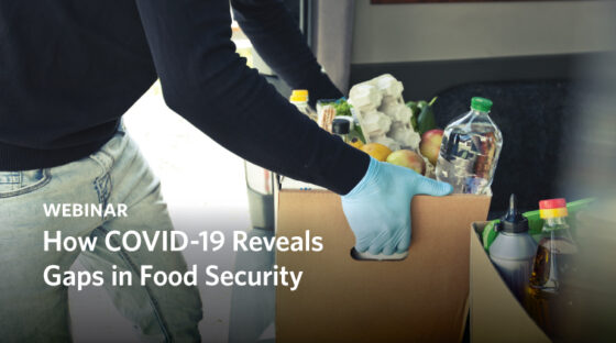 How COVID-19 Reveals Gaps in Food Security