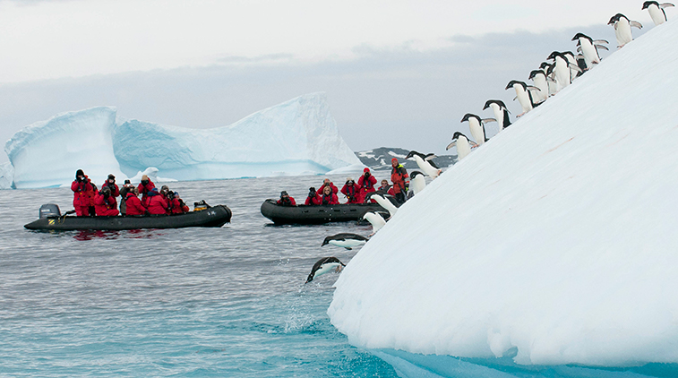Expedition to the Antarctic Circle