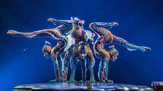 Special Pricing on KURIOS by Cirque du Soleil