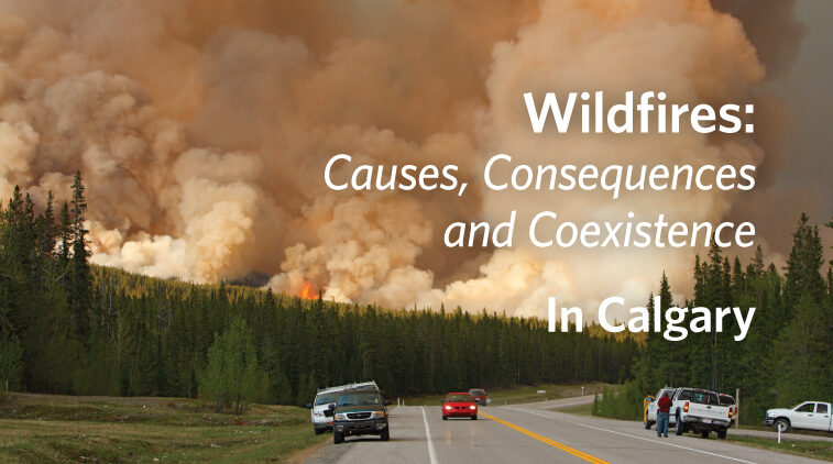 Wildfires: Causes, Consequences and Coexistence – In Calgary