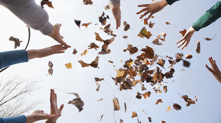 Funtastic Fall