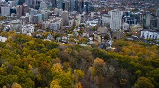 Montreal Autumn Walk